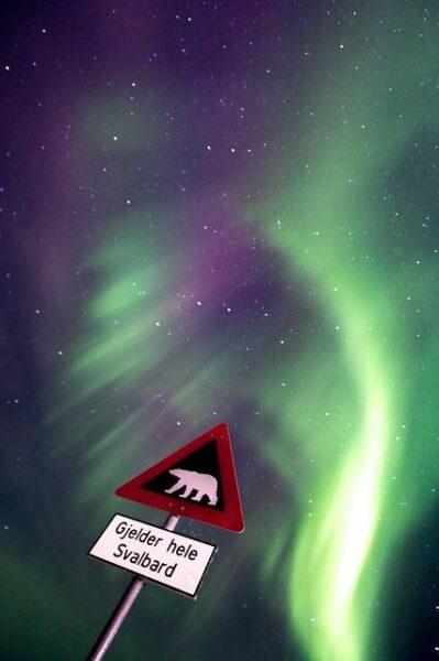 aurora 1185471_640