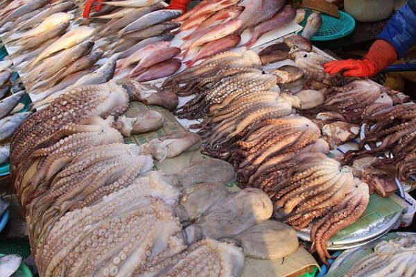 640px Jagalchi_Market_ _Squid_Stall