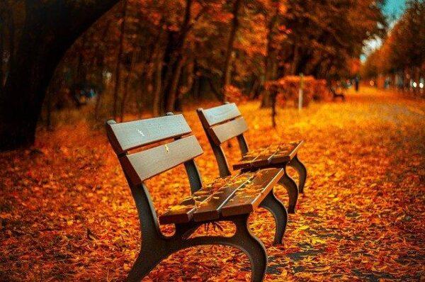 bench 560435_640